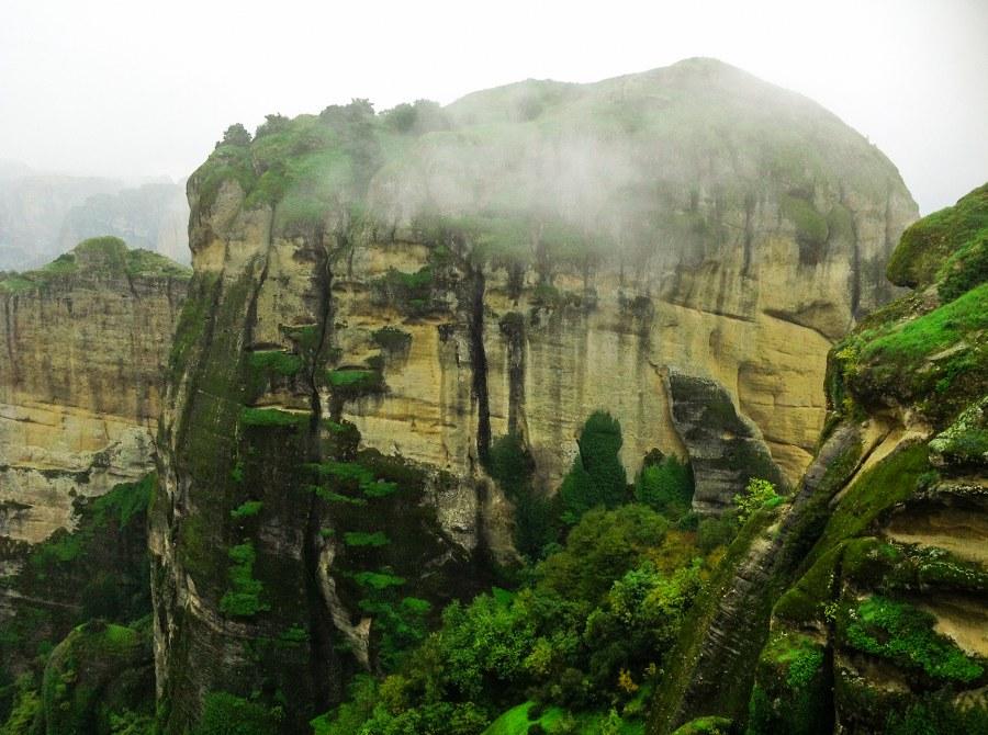 Meteora-forest