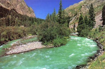 beautiful swat