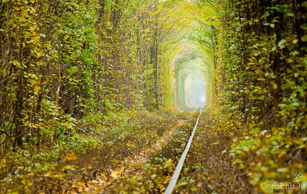 tunnel of love klevan ukraine