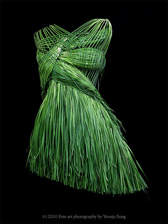 Dresses made of food