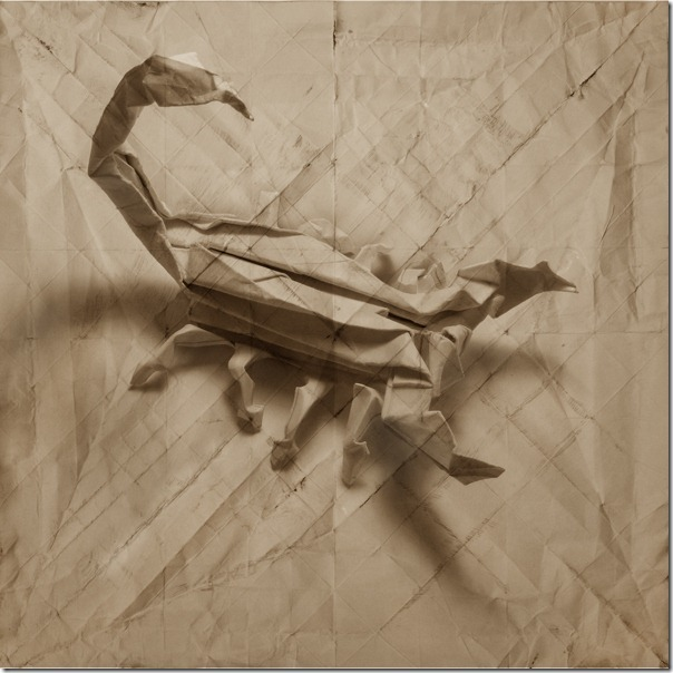Marc Fichou origami scorpion