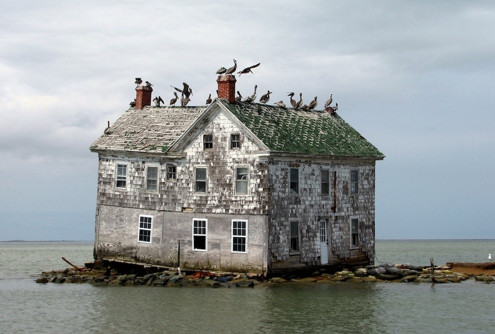 Holland Island Chesapeake Bay